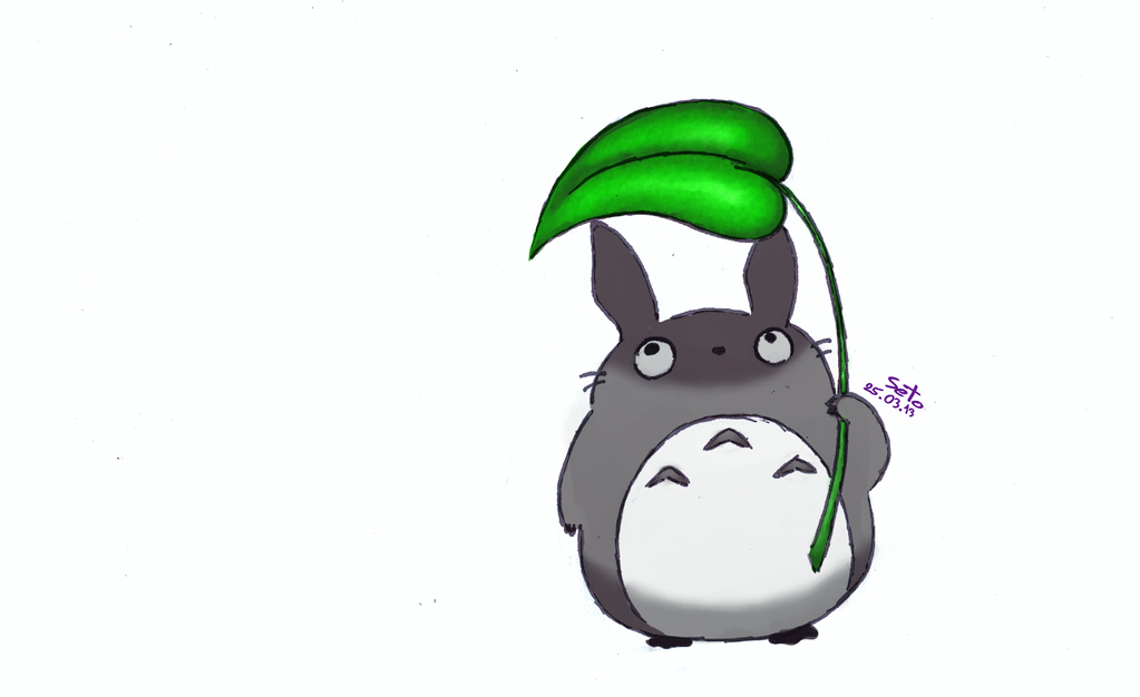 Little Totoro Images