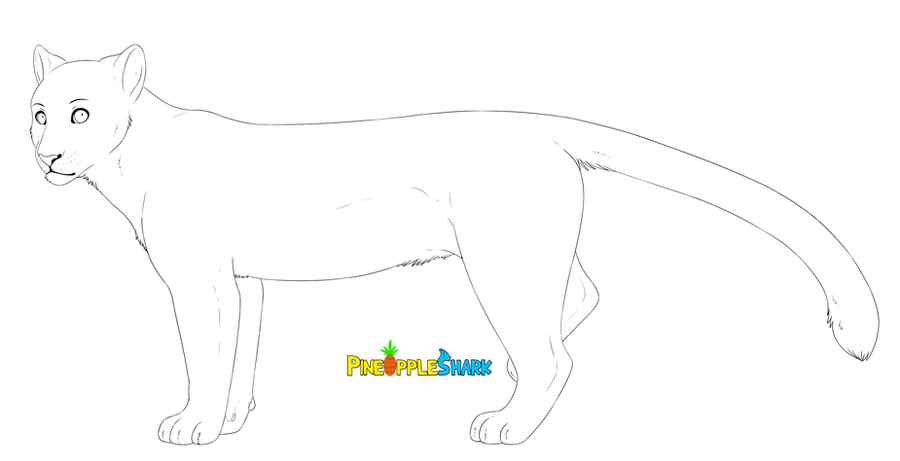 big cat lineart by CitruShark