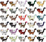 30 more derps (point adopts): OPEN