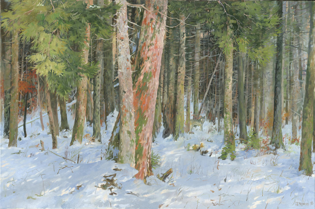 Deep Fir Forest by DChernov