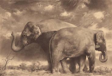 Two Elephants SE by DChernov