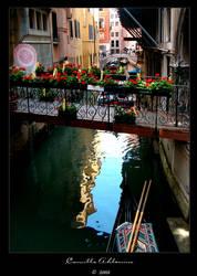 Venice by Millou