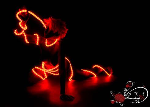 Red Light Reach 2010