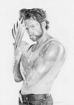 Hugh Jackman as Wolverine / X-Men