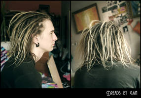 dreads 2 by Alice-Lain