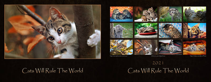 Cats Will Rule The World - Calendar 2021