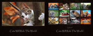 Cats Will Rule The World - Calendar 2019 by ZoranPhoto