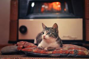 Warm home by ZoranPhoto