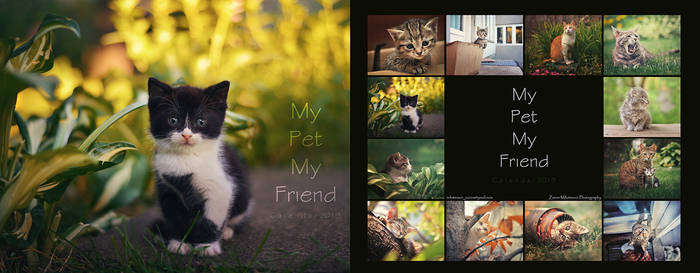 My Pet My Friend - Calendar 2019
