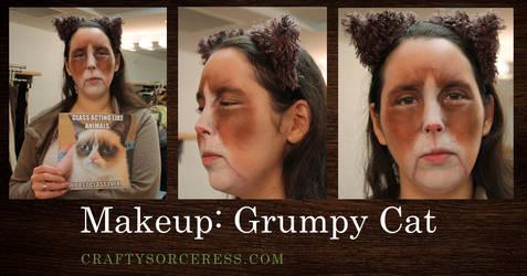 Grumpy Cat Makeup by craftysorceress
