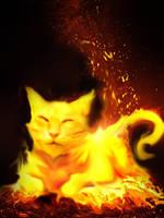 Fire Cat by Meowaffles