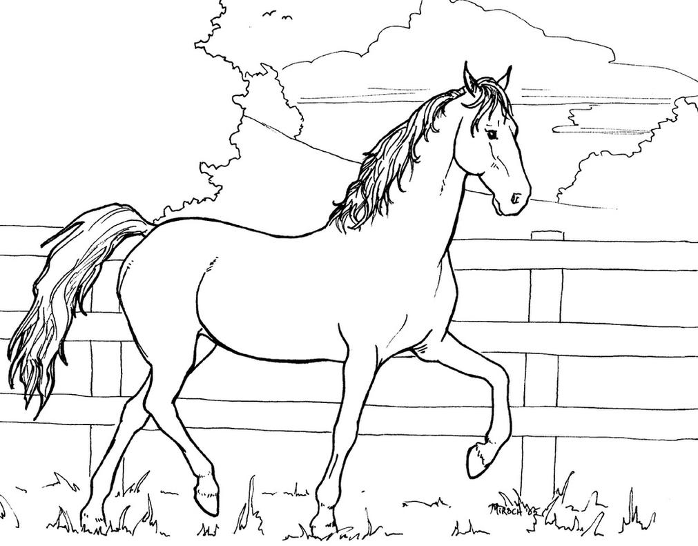 Horse Colouring Page Coloring Pages For Kids