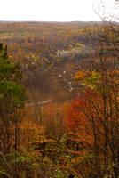 It's Autumn by myrnajacobs