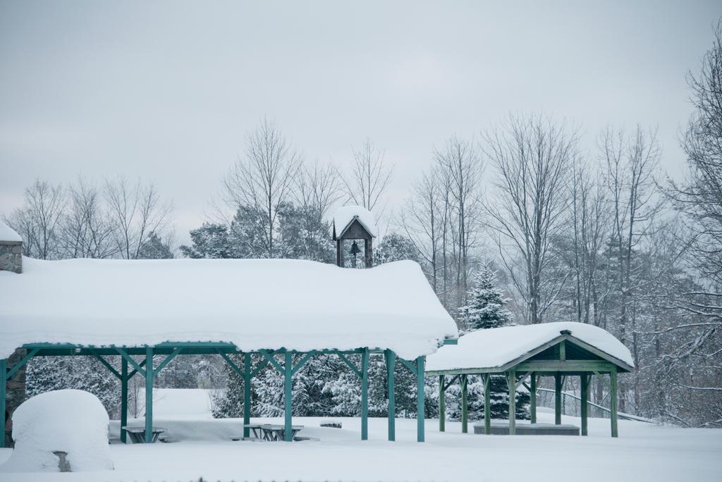 Richardi Park by myrnajacobs