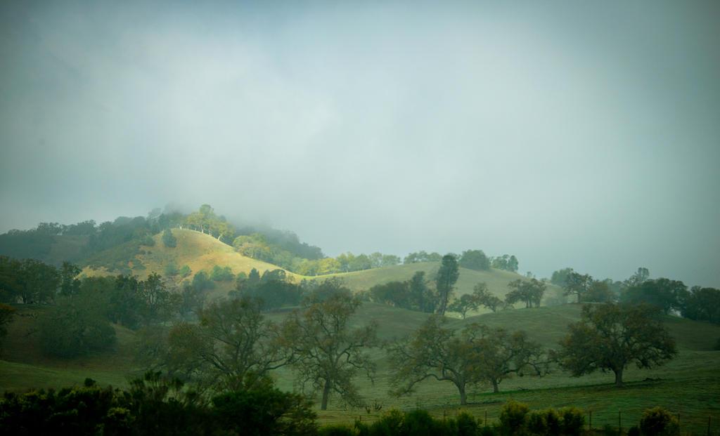 The California Hills by myrnajacobs
