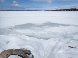 Frozen Lake Imitates Birds