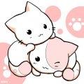 cute cats by XxDark-SkyXx