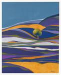 The lavender field