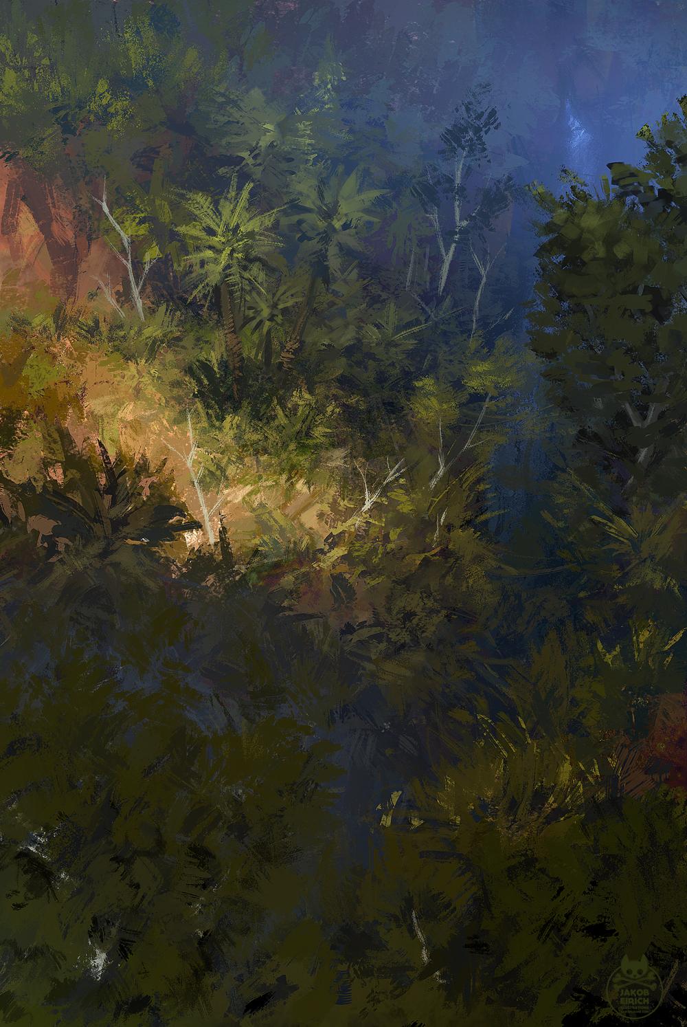 Jungle sketch