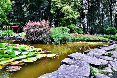 Garden by loker90