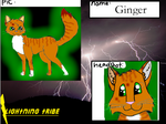 Ginger by MintFireTheCat