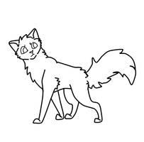 Cat lineart