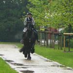 baroque rider in the rain