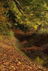 autumn forest brook landscape stock by Nexu4