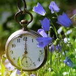 clock square in summer mood by Nexu4