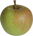 apple precut stock image png