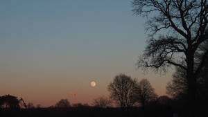 moonrise in winter
