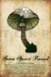 Green Spored Parasol Mushroom