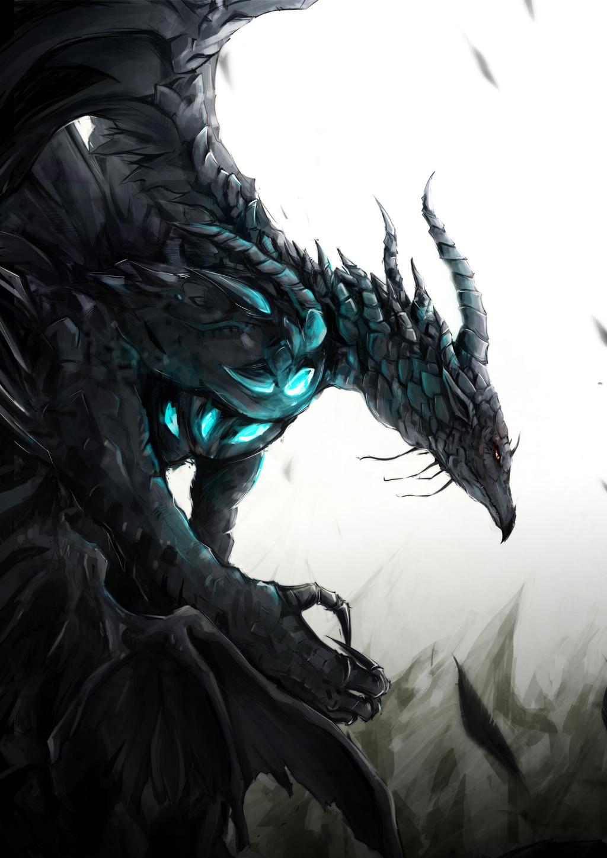 The Black Dragon by Coolnova