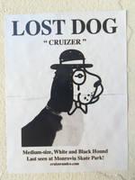 Cruizer the gentle dog by 0640carlos