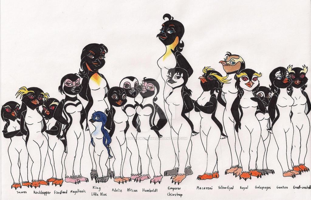 Penguin Species Chart by 13foxywolf666 on DeviantArt