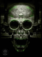 Black-green-skull-by-krane by zordesign