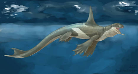 Komodo whale