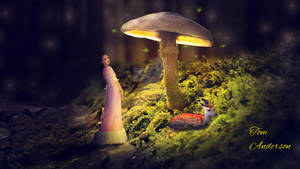 mushrooms ThisOne2b N