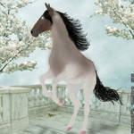 Horse Avatar#4