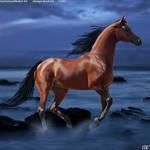 Horse Avatar#5