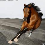 Horse Avatar#6