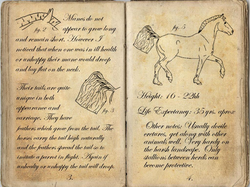 CJC Field Notes: Anatomy Cont. by Orstrix on DeviantArt