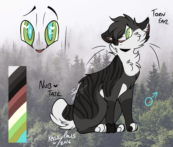 . Quailfrost . Medicine Cat of Riverclan . New_canvasfbwvert_by_kaseypaws-dbs5y04
