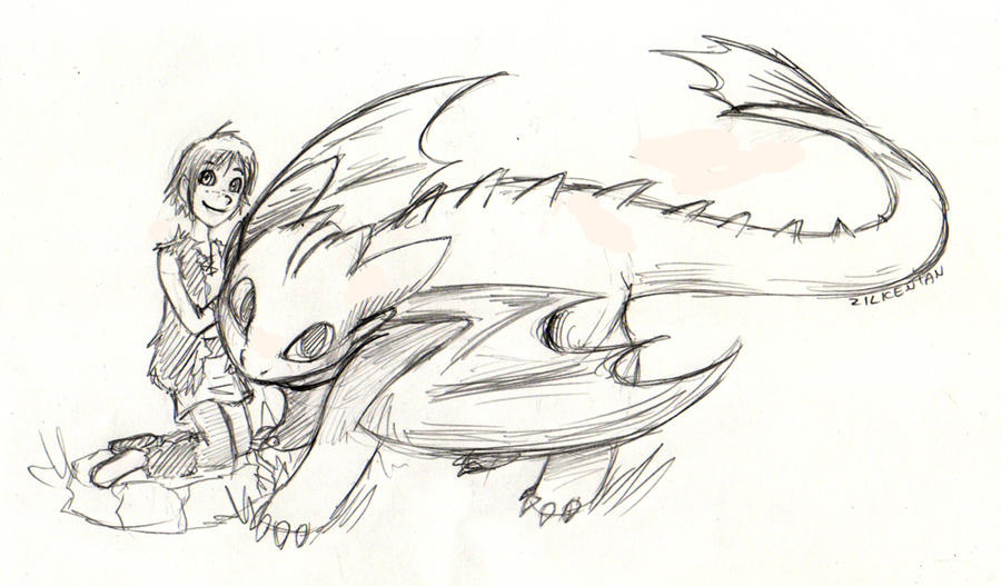 How to train your Dragon by Zilkenian on DeviantArt