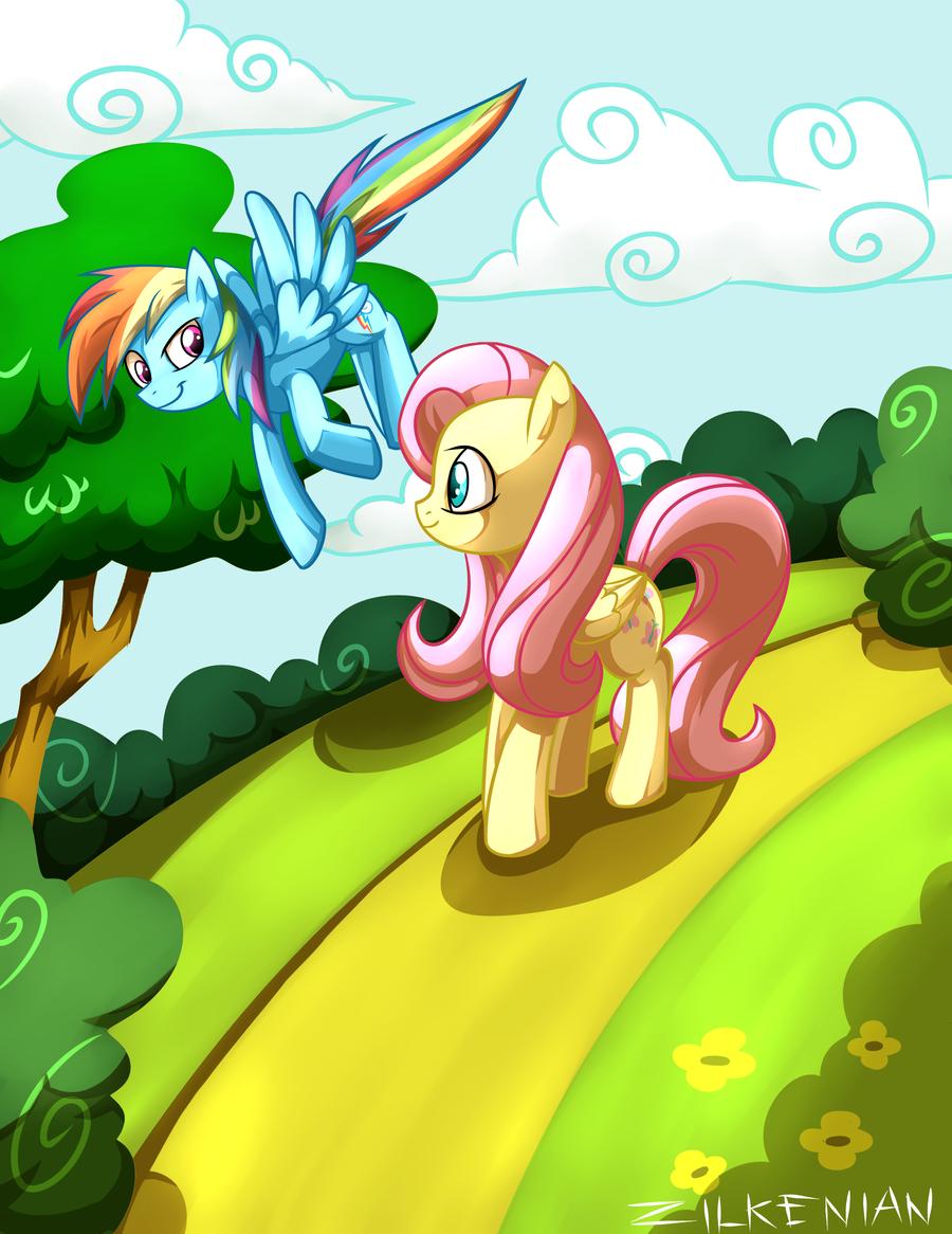MLP: Fluttershy - Rainbow Dash by Zilkenian