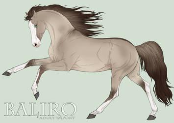 Group Horse 0000 by BaliroAdmin