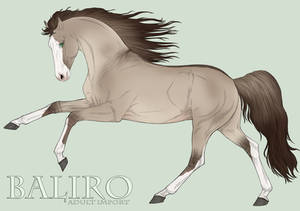 Group Horse 0000