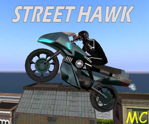 Street Hawk by The-Mind-Controller