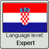 Croatian Language level: Expert by gaaradesert6