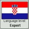 Croatian Language level: Expert by gaaradesert6
